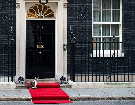 Larry สำนักคณะรัฐมนตรีอังกฤษ