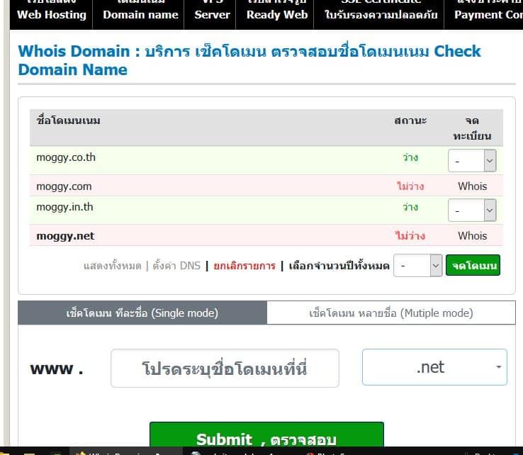 จดโดเมนเนม เลือก web hosting